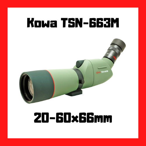 longue vue kowa tsn 663m 20-60x66mm