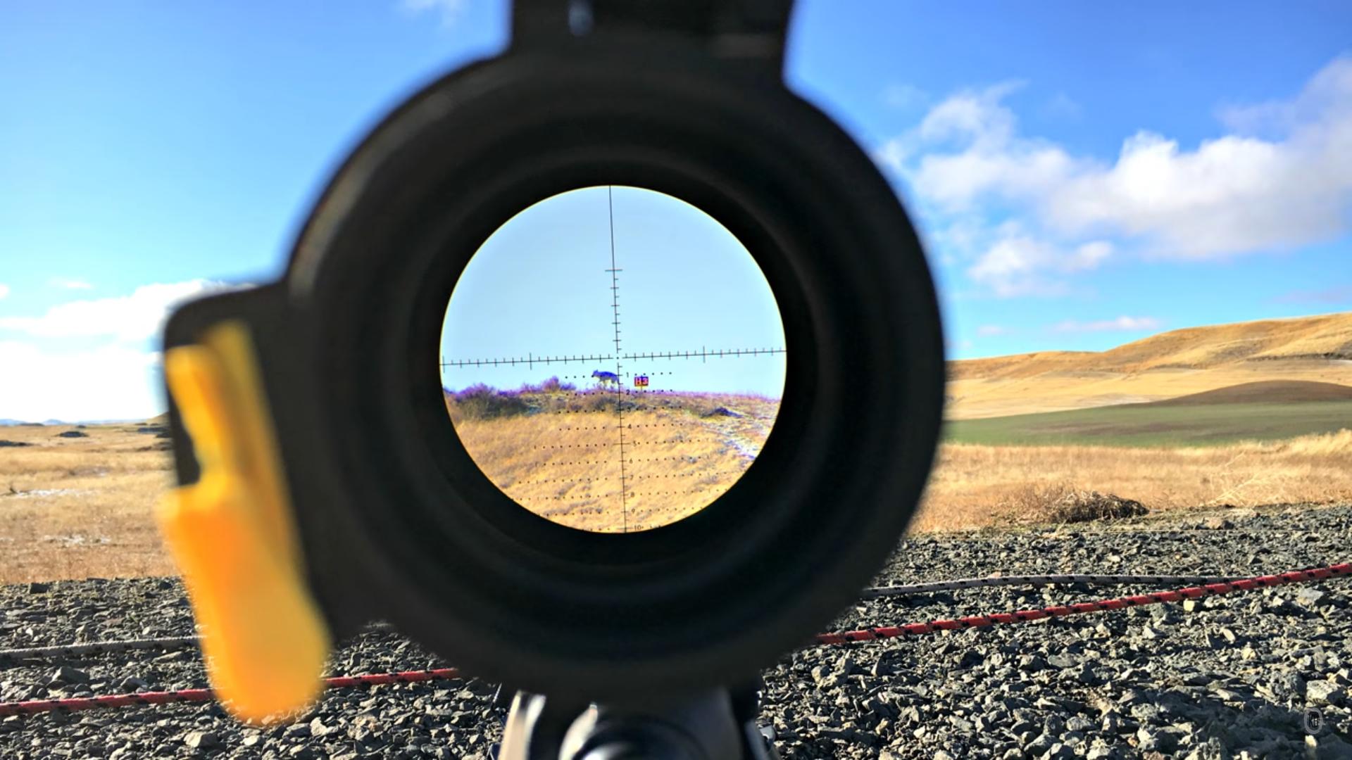 comment choisir sa lunette de visée pour le tir et la chasse meilleures lunettes de visée